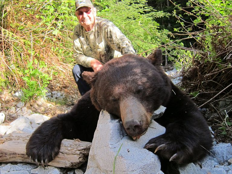 Black bear hunting in BC, Canada